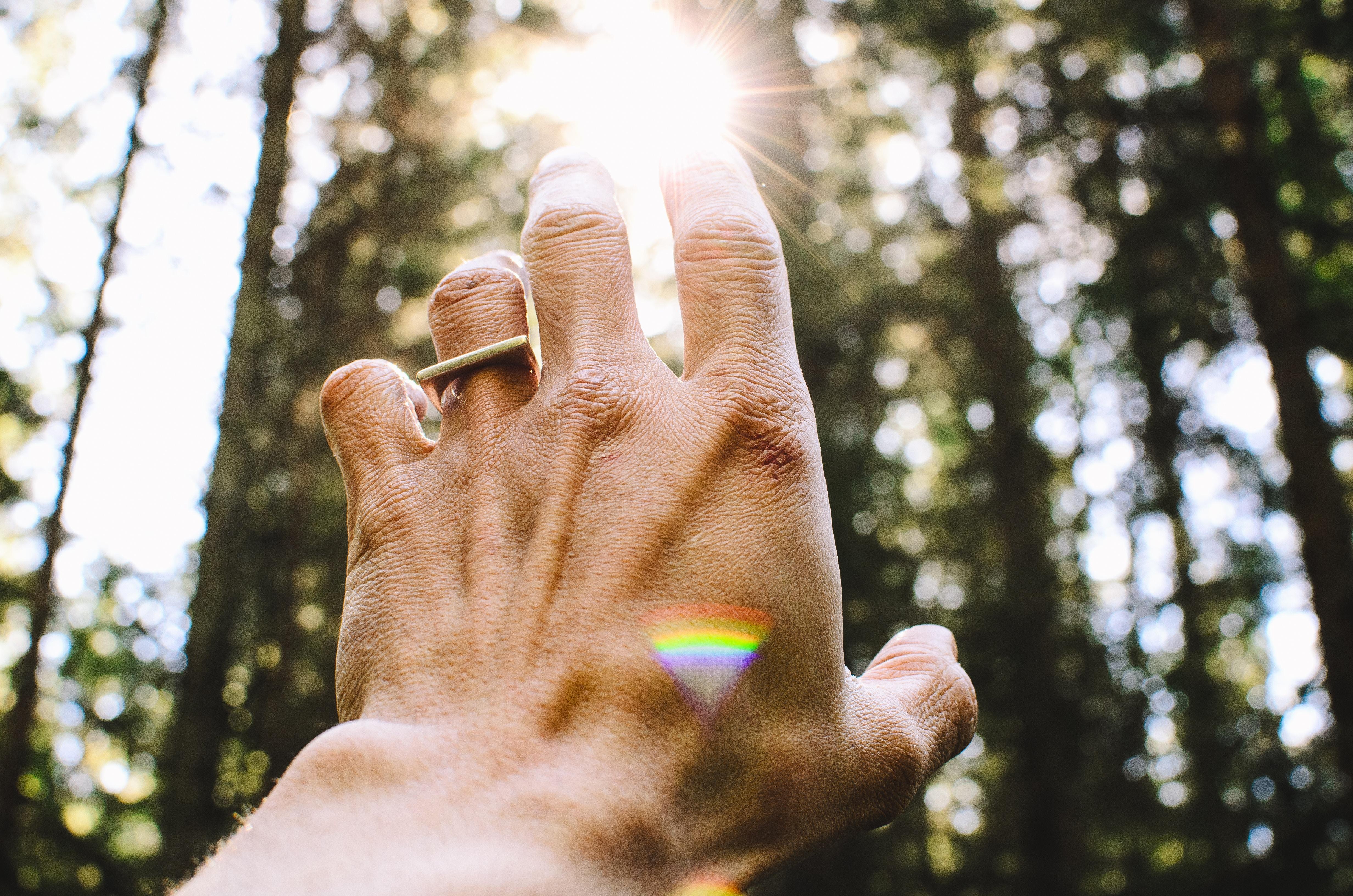 hand reaching for sun